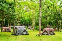 Área que acampa en parque nacional Imagenes de archivo