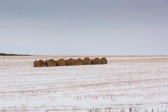 Área rural com um monte de feno Imagem de Stock