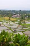 Área rural em Sumatra ocidental fotografia de stock royalty free