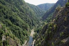 Área selvagem de Carpathians romenos Fotografia de Stock