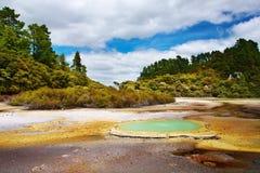 Área térmica de Wai-O-Tapu, Nova Zelândia Imagens de Stock Royalty Free