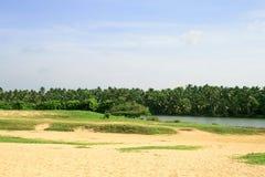 Área tropical correndo através do rio Foto de Stock Royalty Free