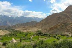 Área verde no vale dos Himalayas Imagens de Stock Royalty Free