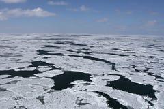 Ártico canadense Fotos de Stock Royalty Free