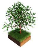 árvore 3d no solo da grama isolado no fundo branco ilustração royalty free