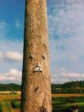 A árvore Imagens de Stock