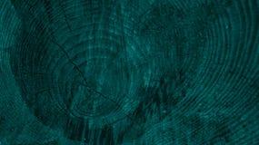 Árvore Imagem de Stock Royalty Free