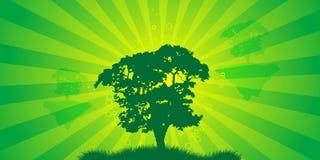 Árvore abstrata Imagens de Stock Royalty Free