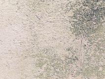 Árvore abstrata Fotografia de Stock