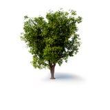 Árvore abstrata 3d Fotos de Stock Royalty Free