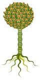 Árvore alaranjada ilustração do vetor