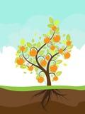 Árvore alaranjada estilizado Imagens de Stock