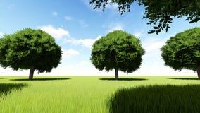 A árvore alinhou a entrada à aleia da árvore ilustração stock