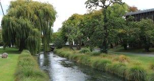 A árvore alinhou o rio o centro da cidade 4K em Christchurch, Nova Zelândia filme
