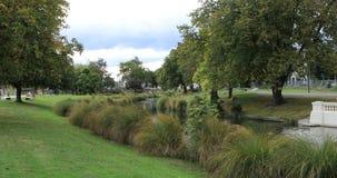 A árvore alinhou o rio em Christchurch, Nova Zelândia na cidade 4K filme