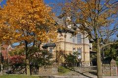 A árvore alinhou a rua residencial com cor da queda foto de stock royalty free