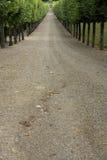A árvore alinhou a trilha do cascalho que conduz para jardinar, o castelo de villandry, france Fotos de Stock Royalty Free