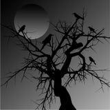 Árvore assustador ilustração royalty free
