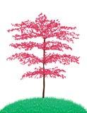 Árvore bonita Fotografia de Stock