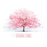 Árvore bonita da flor de cerejeira ilustração royalty free