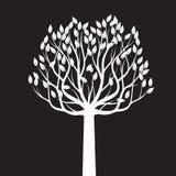 Árvore branca com folhas Ilustração do vetor ilustração do vetor