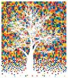 árvore branca em quadrados Fotografia de Stock