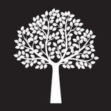 Árvore branca no fundo preto Ilustração do vetor ilustração royalty free
