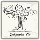 Árvore caligráfica Foto de Stock
