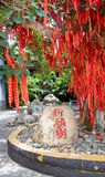 A árvore chinesa do dinheiro Fotos de Stock Royalty Free