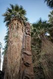 Árvore cinzelada em mil conservas dos oásis das palmas Fotos de Stock Royalty Free