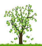 Árvore coberto de vegetação com o dinheiro. Sucesso comercial Fotos de Stock