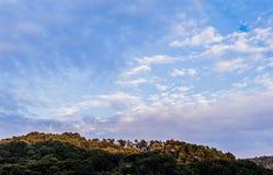 A árvore cobriu a montanha sob o céu azul fotografia de stock