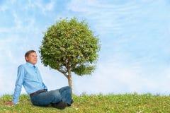 Árvore com céu azul e grama verde Imagens de Stock