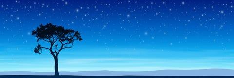 Árvore com céu noturno ilustração royalty free