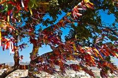 Árvore com fitas coloridas Fotografia de Stock Royalty Free