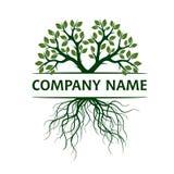 Árvore com folhas e raizes Ilustração do vetor Nome de companhia ilustração stock