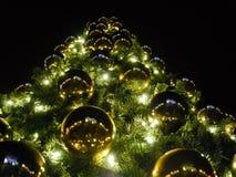 Árvore com luzes Imagem de Stock