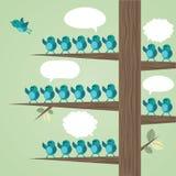 Árvore com muitos pássaros. Imagem de Stock