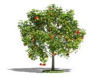 Árvore com presentes Imagem de Stock Royalty Free