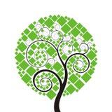 Árvore com quadrado Imagens de Stock