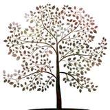 Árvore com a silhueta das folhas no vetor branco ilustração stock
