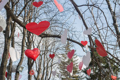 Árvore coração-dada forma verde isolada no branco Foto de Stock