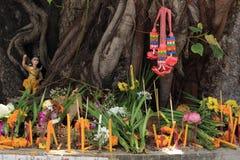 Árvore da adoração Foto de Stock Royalty Free
