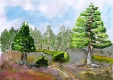 Árvore da aguarela Ilustração Stock