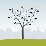 A árvore da câmera Foto de Stock