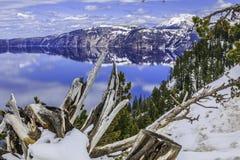 Árvore da escultura na frente do lago crater Imagens de Stock