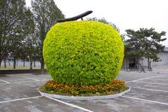 Árvore da forma da maçã Imagem de Stock Royalty Free