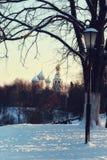 Árvore da luz de rua do inverno Fotografia de Stock
