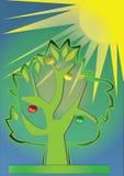 Árvore da luz do sol Fotos de Stock Royalty Free