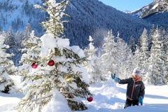 Árvore da menina e de Natal Imagens de Stock